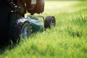 Quality Lawn Service in Leominster, Massachusetts