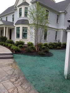 Lawn Installation in Boxborough, Massachusetts