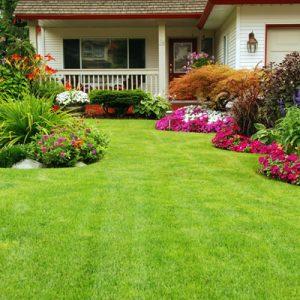 Lawn Fertilization Company in Worcester, Massachusetts