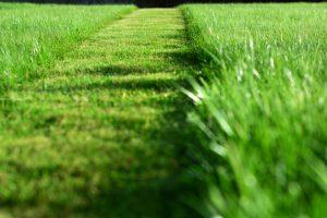 Landscaping Services for Leominster, Massachusetts